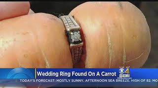 Wedding Ring Found On Carrot