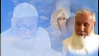 শহীদ নিজামীর সাথে পরিবারের শেষ সাক্ষাতের কথাগুলো তুলে ধরেছেন তাঁর ছেলে ডা. নাঈম খালেদ