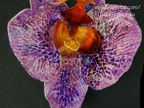 How to make Orchid Flower -- gum paste with or without cutter Phalaenopsis -- May