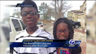 VIDEO: Dog returned to family after girl's fatal accident