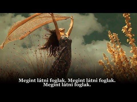 Westlife : I'll See You Again   Megint Látni Foglak (magyar Felirattal) video