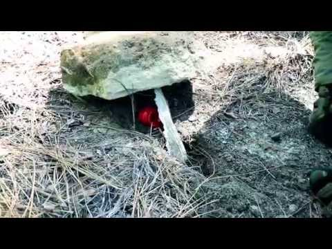 Black Scout Tutorials - How to Build a Countertracking Booby Trap