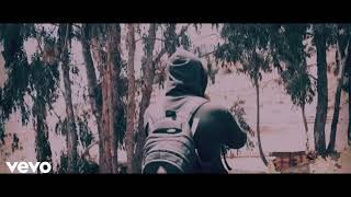 Alan Walker Music Promoted by V Records India