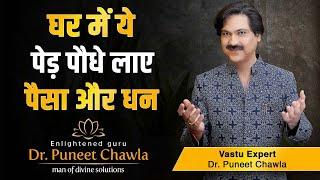 Vastu – अपने घर में कौन सा पौधा लगाएं, घर में लगे वृक्ष खोलते हैं आपकी बंद किस्मत