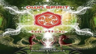 download lagu OWN SPIRIT FESTIVAL 2017  Trailer gratis