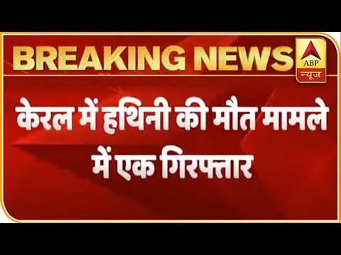 Elephant Killing In Kerala: One Accused Arrested | ABP News