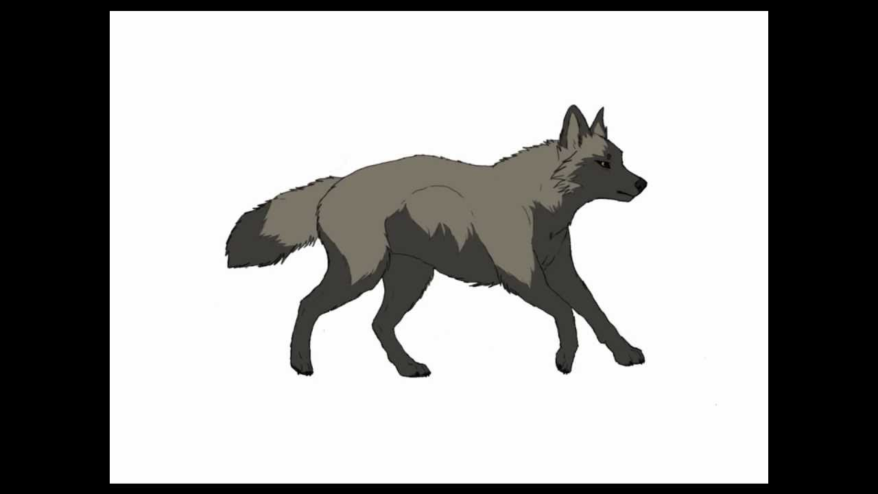 Animated wolf running