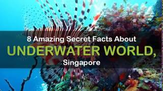 8 Amazing Secret Facts About Underwater World, Singapore