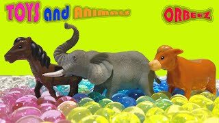 CARTOONS ORBEEZ TOYS ANIMALS and natural animals name of animals COLOR FIGURE NUMBERS in English