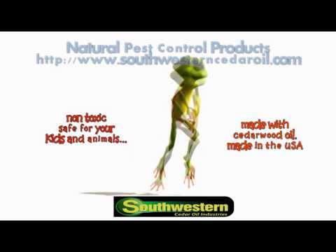 Natural Pest Control Products Doin' it....Gangnam style