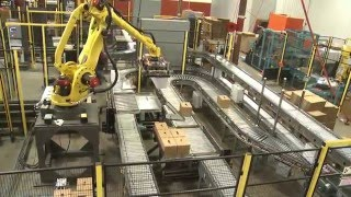 Robots Palletize 4 Production Lines in Multi-Line Robotic Palletizing System - Currie by Brenton®