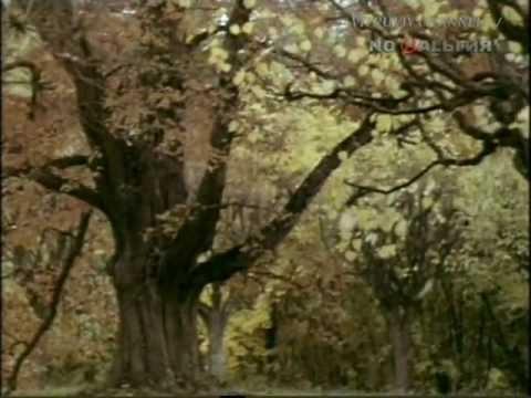 """Пушкин А.С. """"Осень"""" (отрывок). Виды Михайловского."""