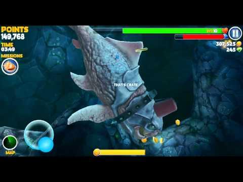 Angler fish attack for Angler fish adaptations