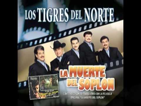 La Muerte del Soplon__Los Tigres del Norte Album La Muerte del Soplon(Año 2006)