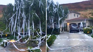 Why Mom Is Applauding Her Toilet-Papered Home