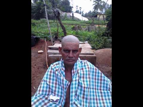 gollamnadalla tanda, a.konduru mandalam, krishna district, andhra pradesh Photo Image Pic