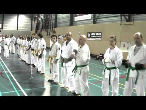 Ashihara/Sei-Budokai/Kyokushin Seminar in the Netherlands 03/2013 part 2/3 Image 1