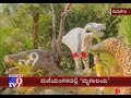 Man Turned His House Into A Artificial Zoo At Madikeri