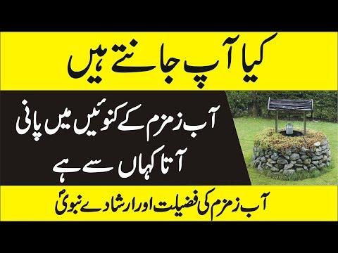 Mystery of Abe Zam Zam  -  Urdu Documentary of Abe Zam Zam thumbnail