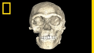 Are These the Oldest Modern Human Fossils Ever Found? | National Geographic