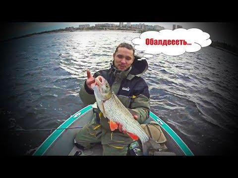 Ловим огромных голавлей. Никогда таких не видал. Рыбалка в Волгограде.