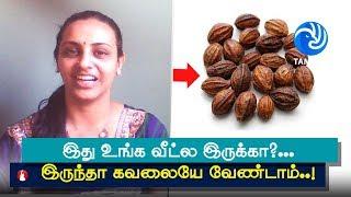 இது உங்க வீட்ல இருக்கா?... இருந்தா கவலையே வேண்டாம்... இல்லாட்டி வாங்கி வைங்க..! - Tamil TV
