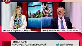 İş ve Yaşam | Prof.Dr.Enver İhtiyar