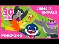 Lagu Animals, Animals | Baby Shark and More | +Compilation | Animal Songs | Pinkfong Songs for Children