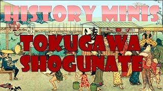 History Mini #1   Tokugawa Shogunate