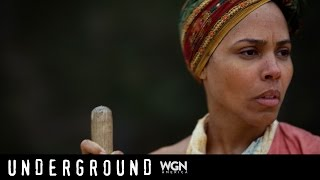Underground: Behind The Scenes Of The Roe Plantation