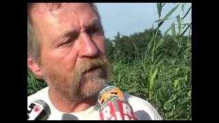 Tous Cobayes Documentaire sur les OGM