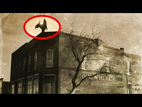 Was The Legendary Mothman Sighted In London In 1968...?