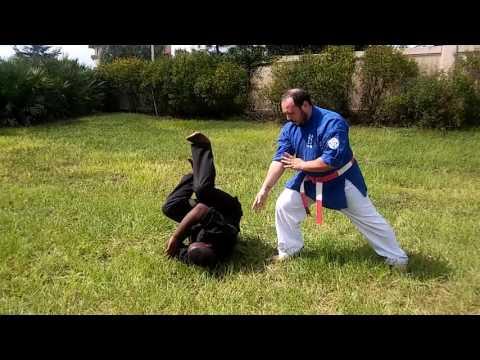 Trio Martial Arts Academy - Differences Between Jujutsu & Aiki Jujutsu