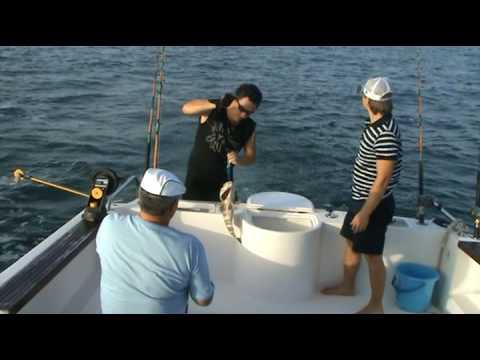 рыбалка в дубае видео