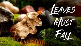"""Peaceful music, Relaxing music, Instrumental Music """"leaves must fall"""" by Tim Janis"""