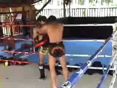 Tiger Muay Thai: Pad training w/ Berneung WMC World Champion Image 1