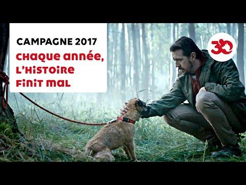 Nueva campaña de sensibilización contra el abandono de perros
