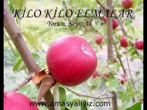 Kilo Kilo Elmalar (Müzik)