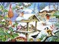 Птицы в кормушке Снегирь Синица Воробей mp3