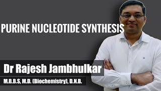 Purine nucleotide synthesis- AMP and GMP