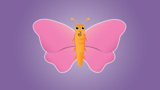 Butterfly Song Video