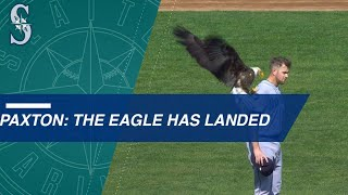 Bald eagle lands on Paxton during anthem