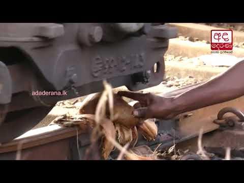 train narrowly misse|eng