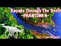 Following Kayaks through the trees- DJi Phantom 4 |Lake Bastrop, TX| 4K(UHD)