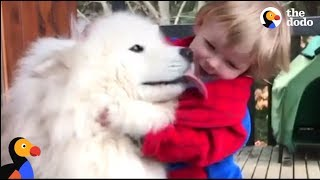 Dog Teaches His Little Boy About The World | The Dodo