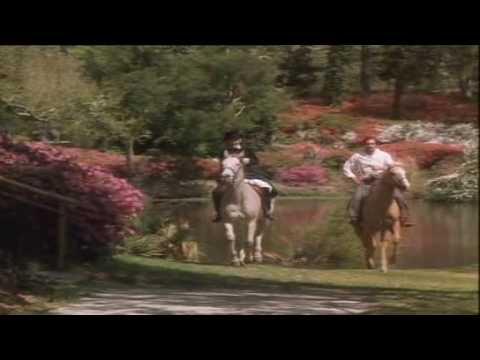 Scarlett 1x04 miniserie 1994 CAPITULO COMPLETO
