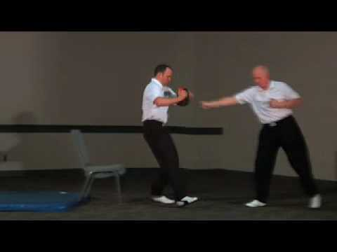 JKD (Jeet Kune Do)1 BRUCE LEE'S ONE INCH PUNCH Image 1