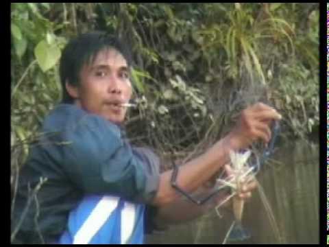Mancing Udang Galah Budak pontianak ke pedalaman Kalimantan barat, minggu 9 mei 2010