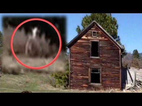 Windigo Sighting 2013 (Slender Man Like Creature)