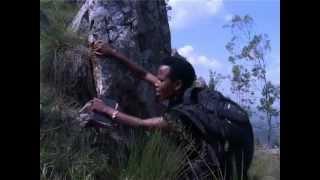 Nshingira amabuye